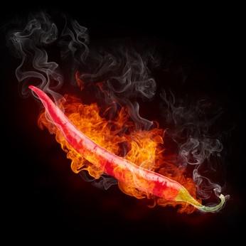 Chili – der scharfe Tipp für eine erfolgreiche Diät