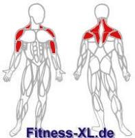 Schulter Nacken Muskeln