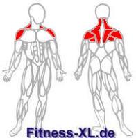 Schultern Nacken