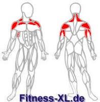 Muskeln Nackendrücken