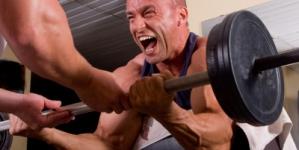 Muskelaufbau – Training und Reizsetzung