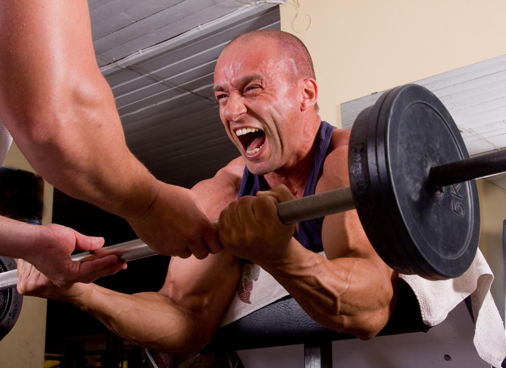 Bodybuilding Muskelwachstum