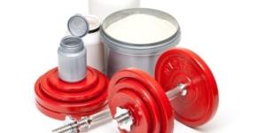 Proteine im Bodybuilding