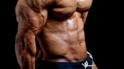 Trizeps Training – wie ihr alle 3 Teile des Trizeps optimal trainiert
