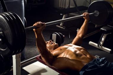 Brustmuskulatur - Brust trainieren