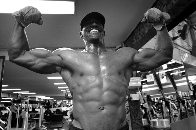 Aminosäuren - wichtig für den den Muskelaufbau