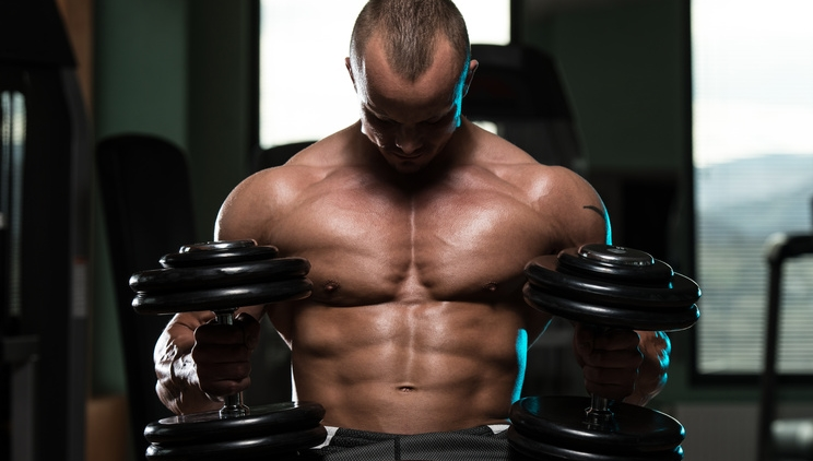 Muskelaufbau mit Kreatin und Ribose