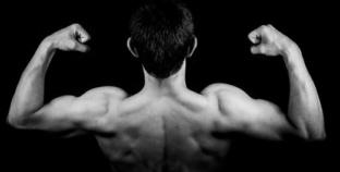 So wichtig sind Aminosäuren für den Muskelaufbau